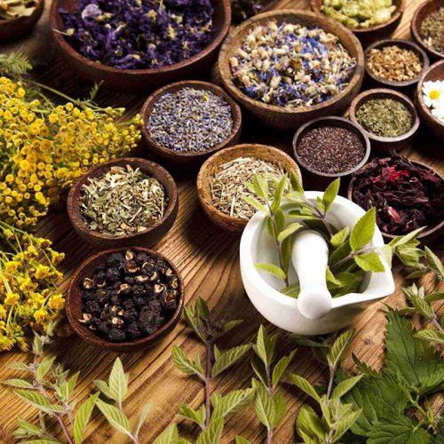 درمان گیاهی یا گیاه درمانی